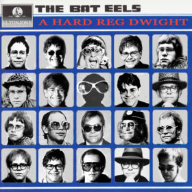 The Bat Eels - A Hard Reg Dwight